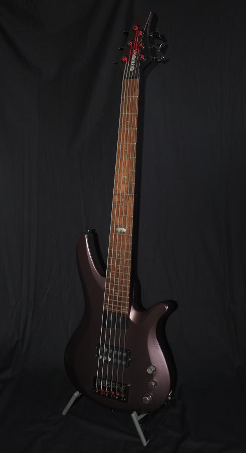 Bass: 6-Saiter