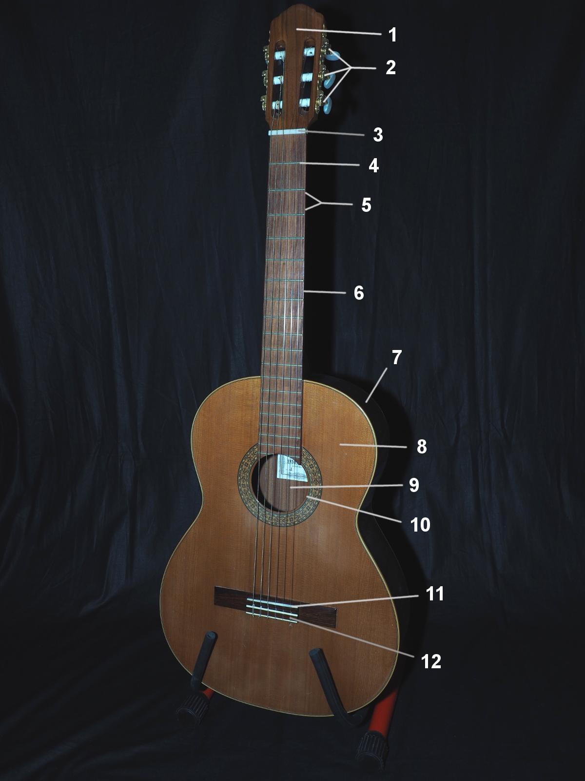Konzertgitarre: Bezeichnungen der Teile